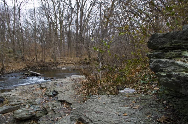 If there were trout in Illinois, which there isn't, they would live here.